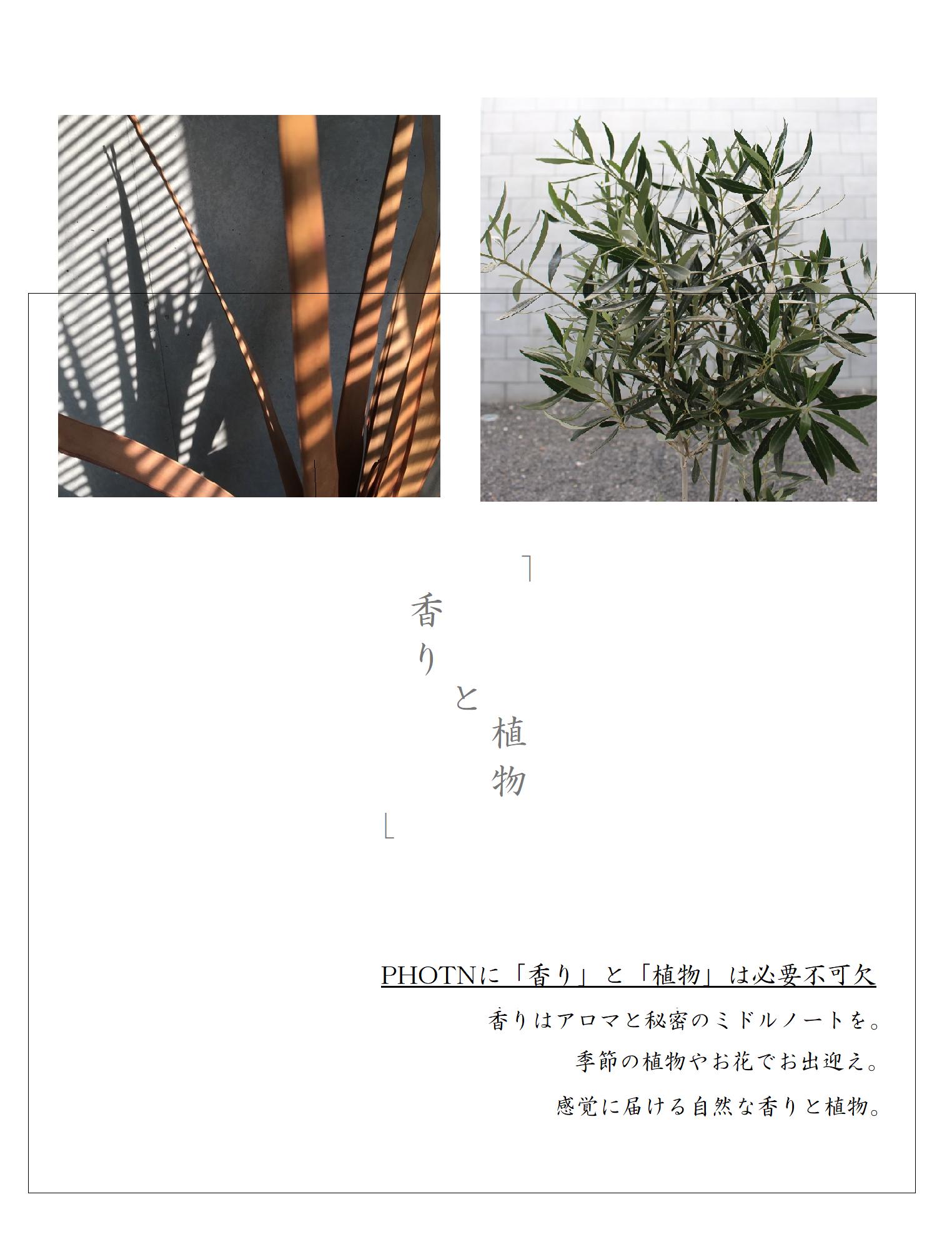 │ PHOTON ( フォトン )│private nail art lab Tokyo│ プライベート ネイル サロン │ 明大前  東京